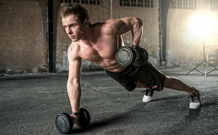 5 components of fitness? Why physical fitness is important?