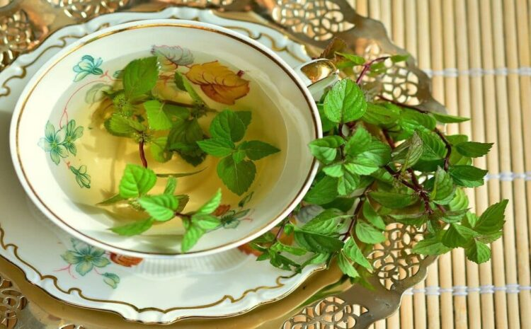 Green tea benefits for the skin